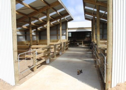 Stables at Weiti Waikato