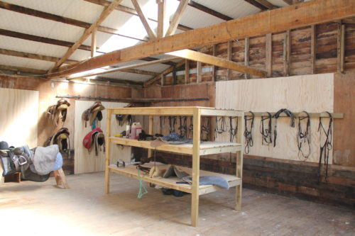 Tackroom at Weiti Stables