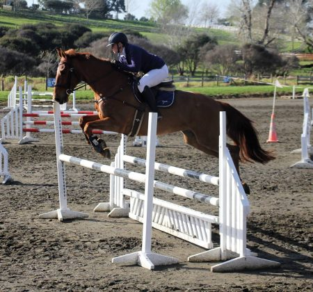 Showjumping Woodhill Littorio