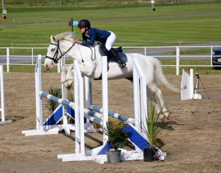 Showjumper Rookie Blue or Molly